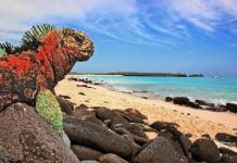 vista islas galapagos